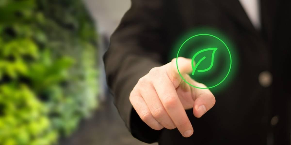 ¿Eres realmente sustentable? Crean aplicación para medir la huella de carbono de tu empresa