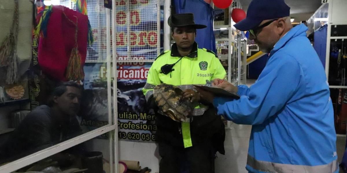 Incautan animales silvestres que eran vendidos en una papelería de Bogotá