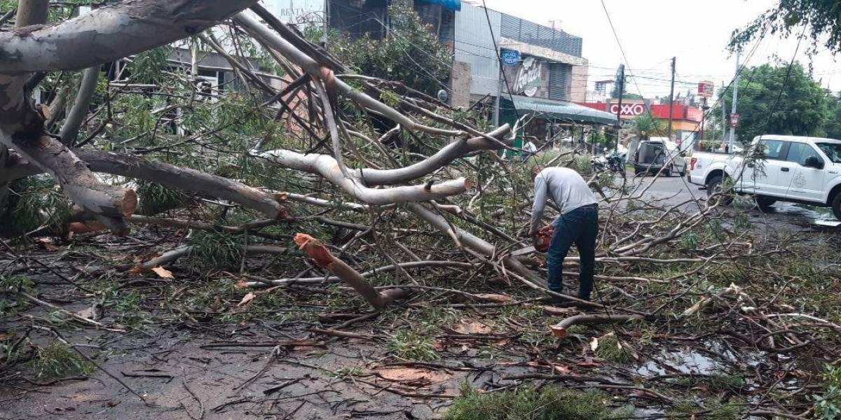 Fuerte lluvia y granizo causan estragos en Guadalajara