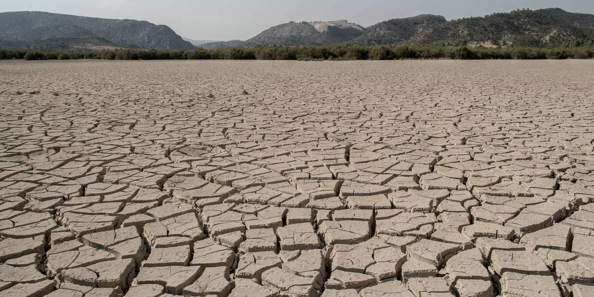 Día Mundial contra la desertificación y la sequía: 22% de territorio nacional está en estado desértico
