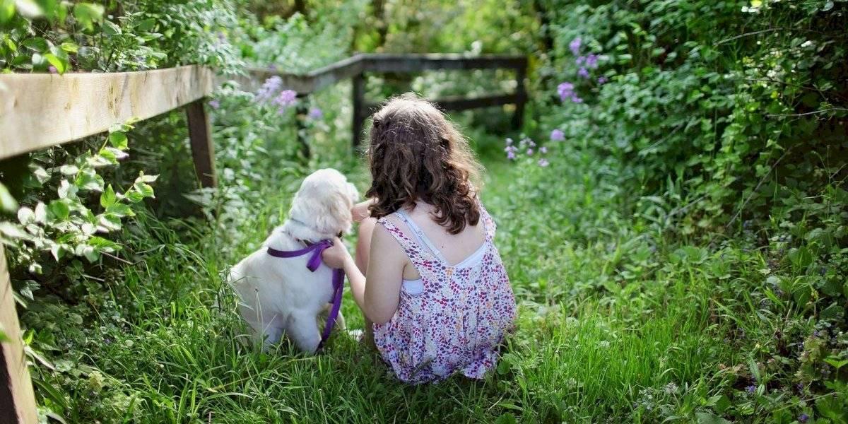Estes são 2 ótimos motivos para ter um cachorro à medida que seu bebê cresce