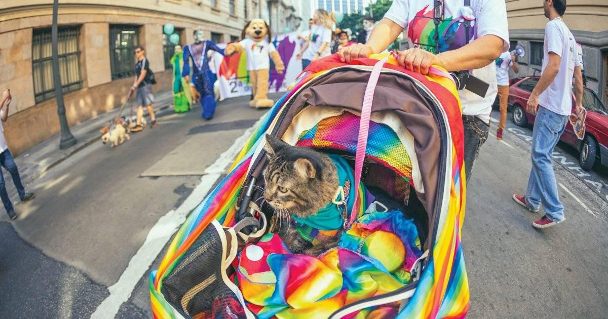 19ª Feira Cultural da Diversidade