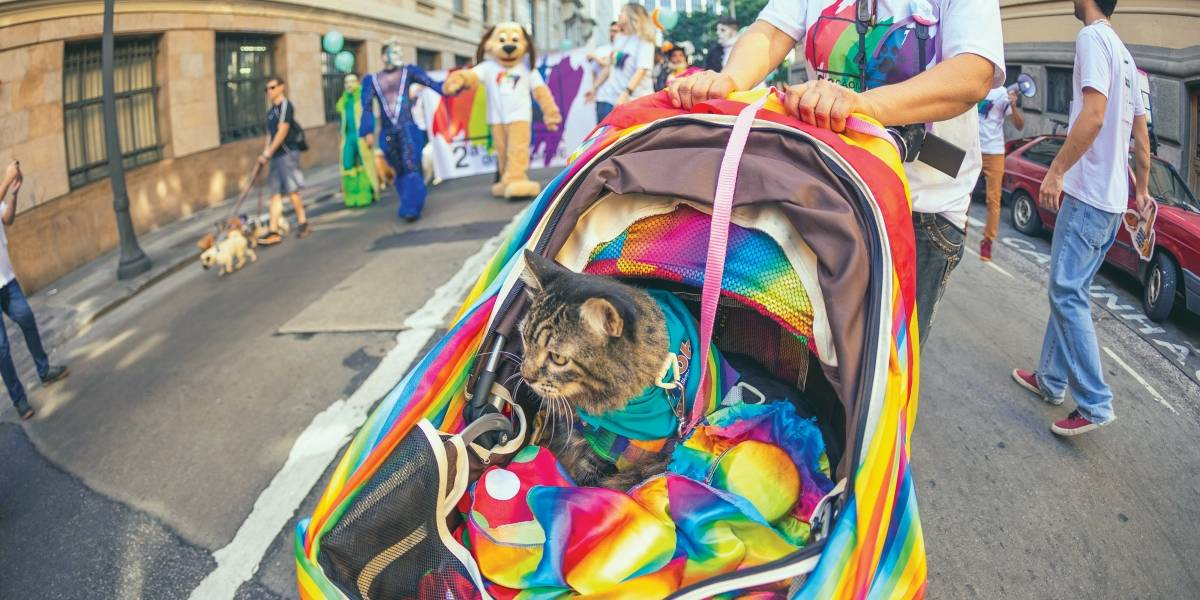Conheça eventos e lugares LGBT+ friendly para aproveitar em São Paulo