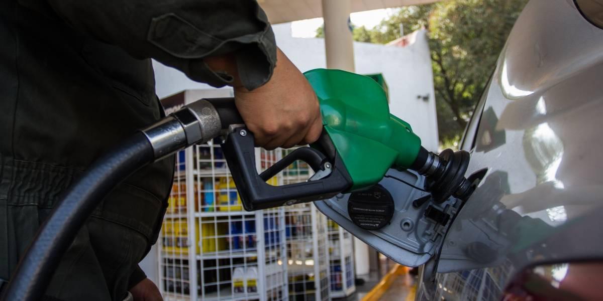 Presenta Profeco app para monitorear precios en gasolineras