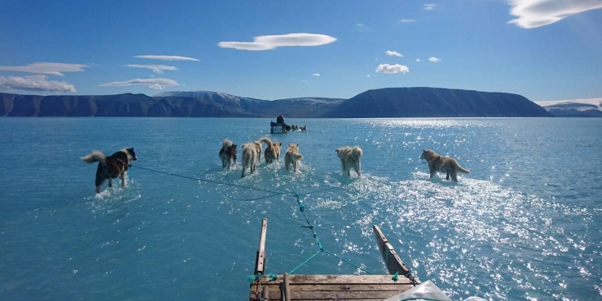 Cuando una imagen vale más que mil palabras: la fotografía de un investigador en Groenlandia que retrata el calentamiento global