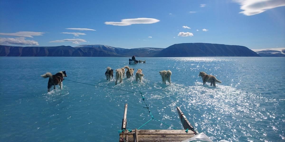 El grave deshielo en Groenlandia queda registrado en foto viral