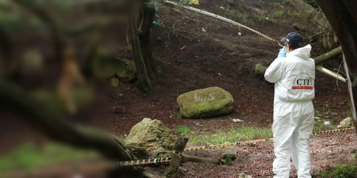 ¡Aberrante! En Bogotá, encuentran perrito ahorcado en un árbol