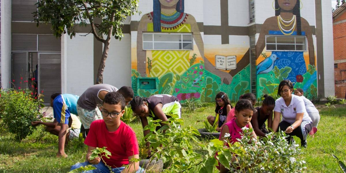 Orgullo nacional: Cali tiene la mejor 'biblioteca verde' del mundo