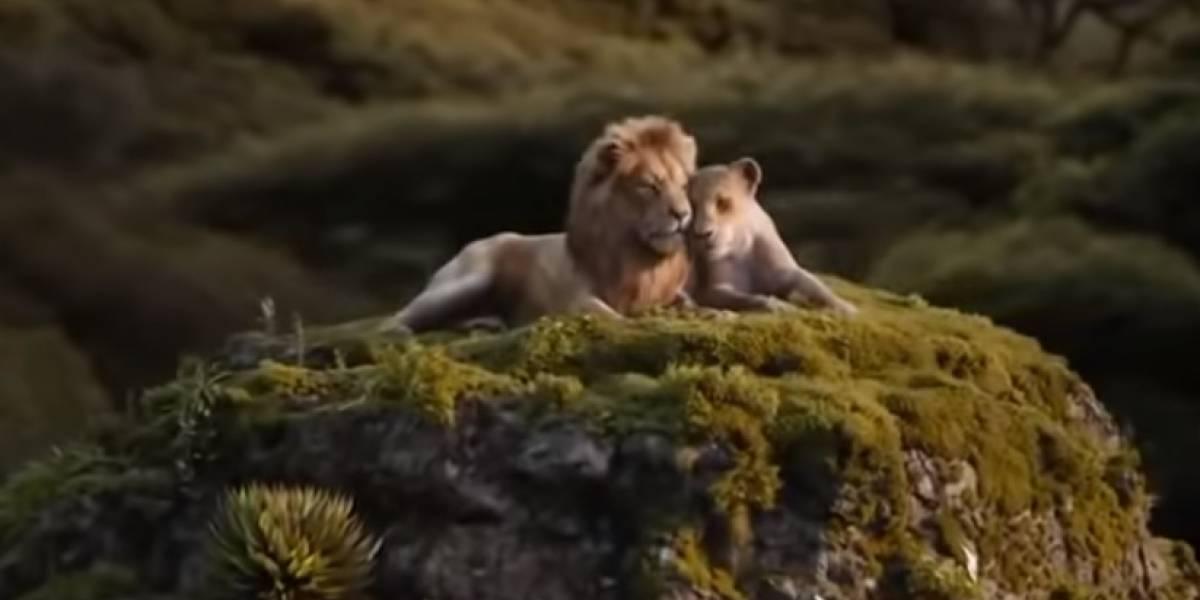 O Rei Leão: Teaser de live-action tem Beyoncé e Donald Glover cantando