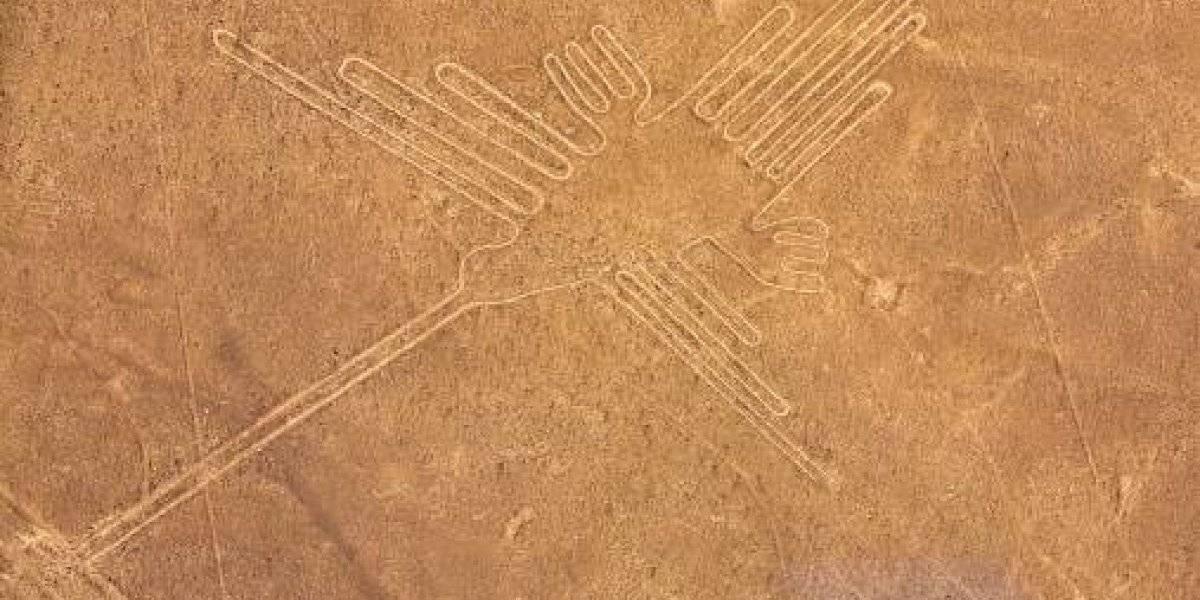 No son lo que se creía: revelan la sorprendente identidad detrás de las enormes aves en las líneas de Nazca