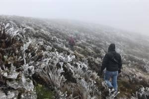 Bajas temperaturas provocan hielo en el Parque Nacional Cajas