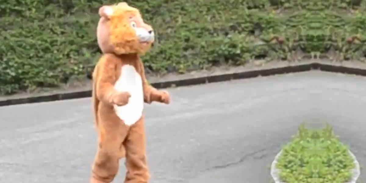 """Hombre disfrazado de león """"escapa"""" de un zoológico en Japón y se hace viral"""