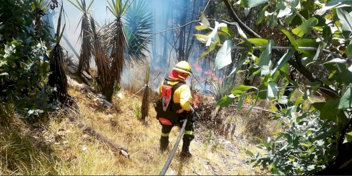 Quito: Incendio forestal en vía a Nono