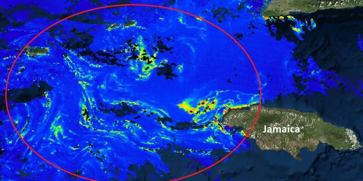 Mancha de sargazo de 550 kilómetros se acerca a costas de México