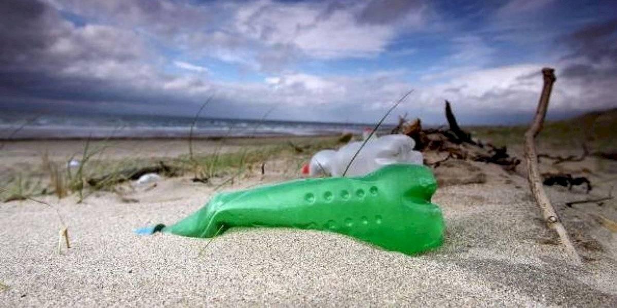Retiran 973,6 kilogramos de desechos de playa en refugio silvestre de Ecuador