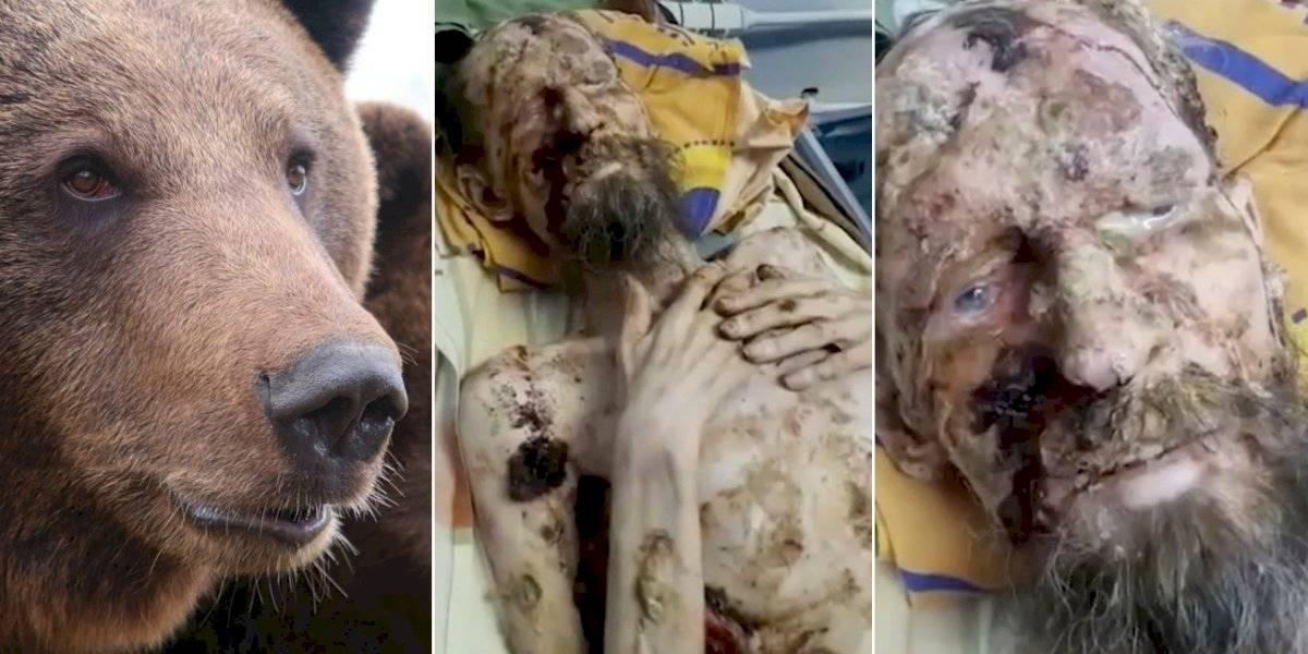 Homem sobrevive um mês preso em toca de urso na Rússia: 'Ele me guardou como comida para o futuro'