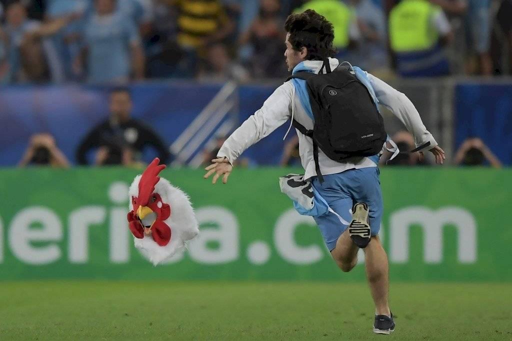 hombre pollo Copa América