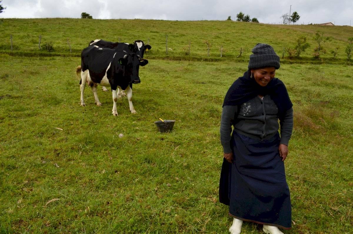 """La """"Ganadería Climáticamente Inteligente"""" se consolida en Ecuador FAO"""