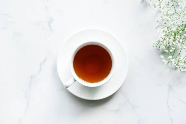 como es mejor tomar el te verde para quemar grasa