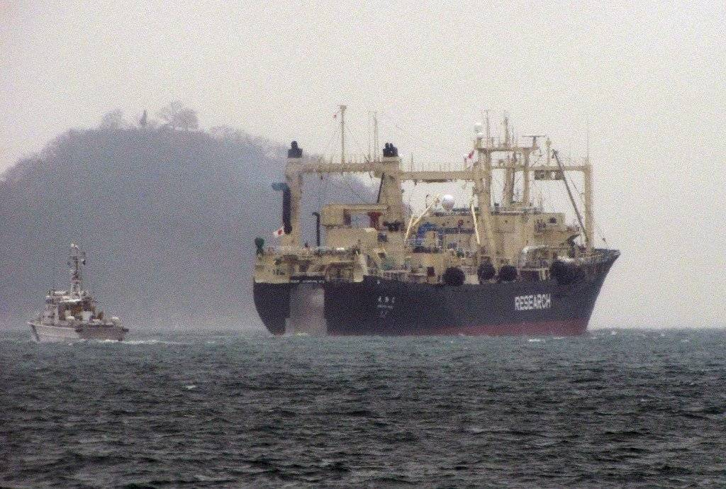 La caza comercial de ballenas se reanuda en Japón