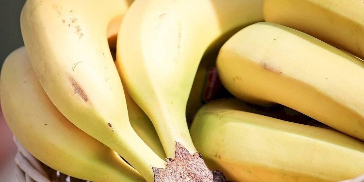 Vitamina proteica de banana ajuda a emagrecer e auxilia na construção de músculos
