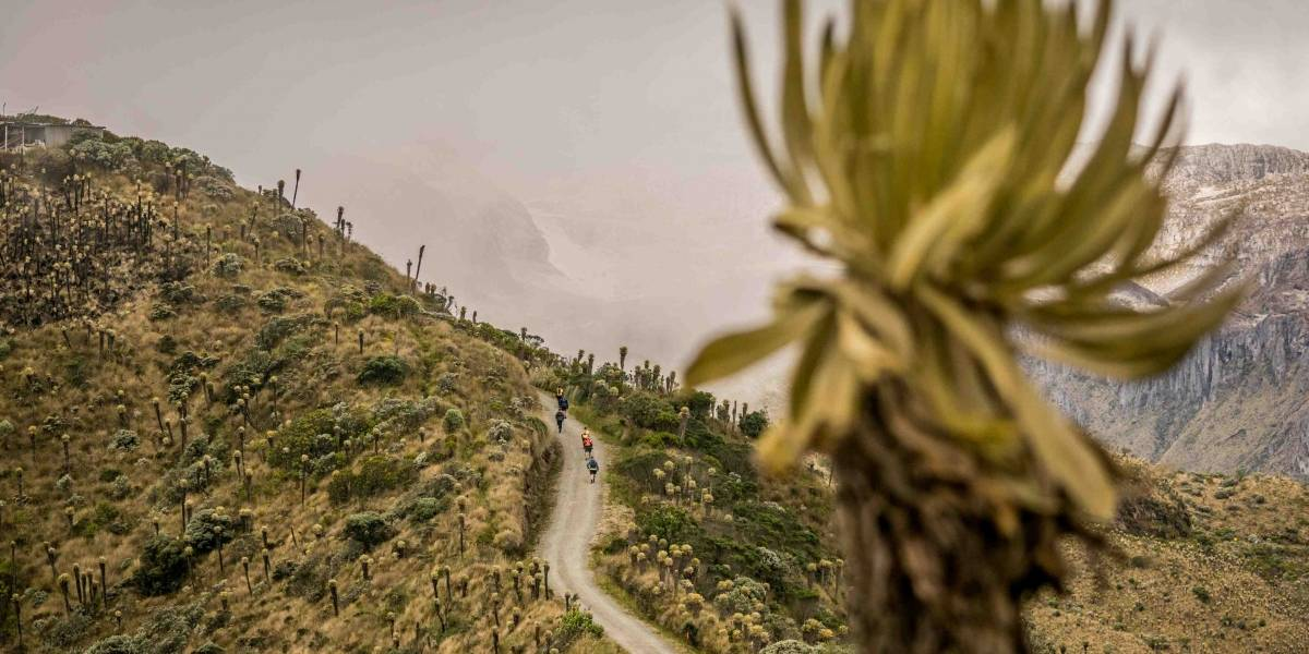 El Maratón Nevado del Ruiz cerró con éxito el segundo Festival de la Montaña