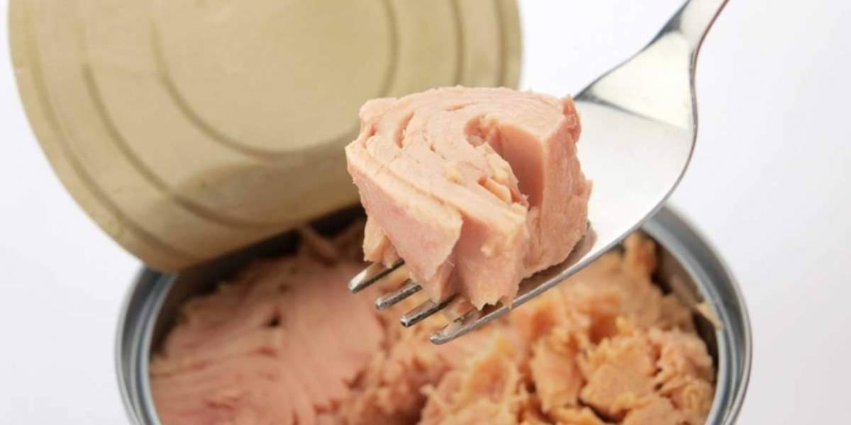 Atentos amantes del atún: Comerlo en exceso aumenta el riesgo de exposición al mercurio