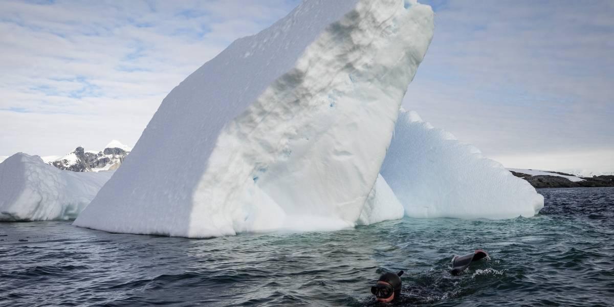 Estudio revela datos sobre el deshielo de la Antártida