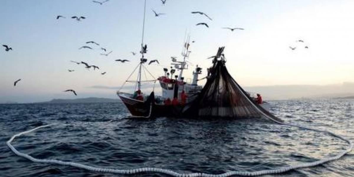 Bahamas libera a 127 pescadores dominicanos acusados de pesca ilegal