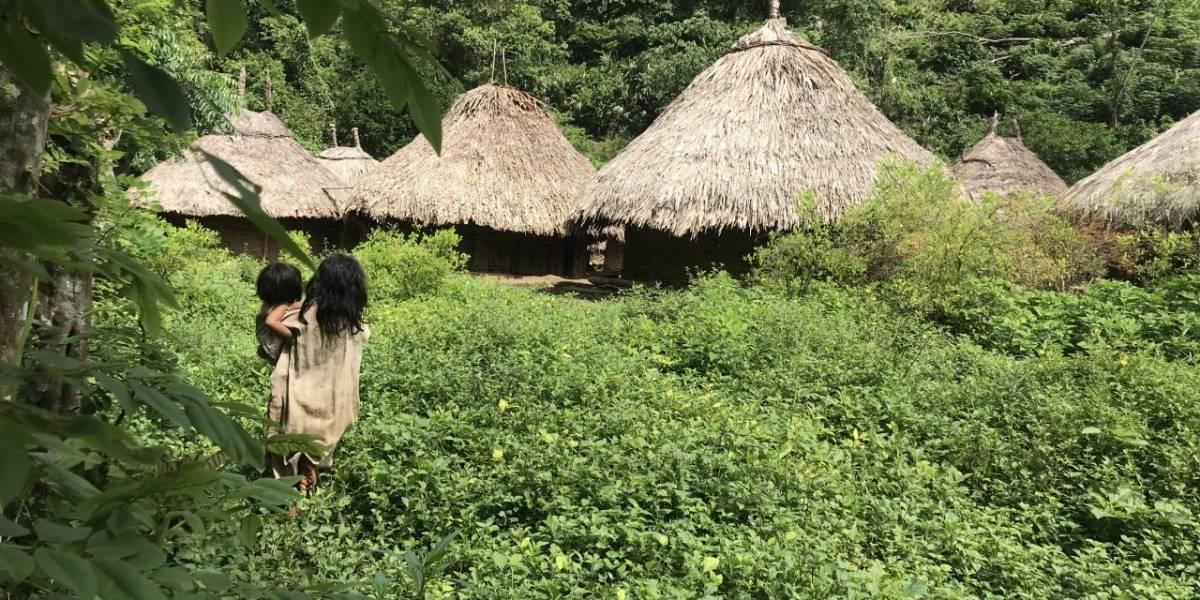 Pueblos indígenas colombianos están en peligro de extinción cultural