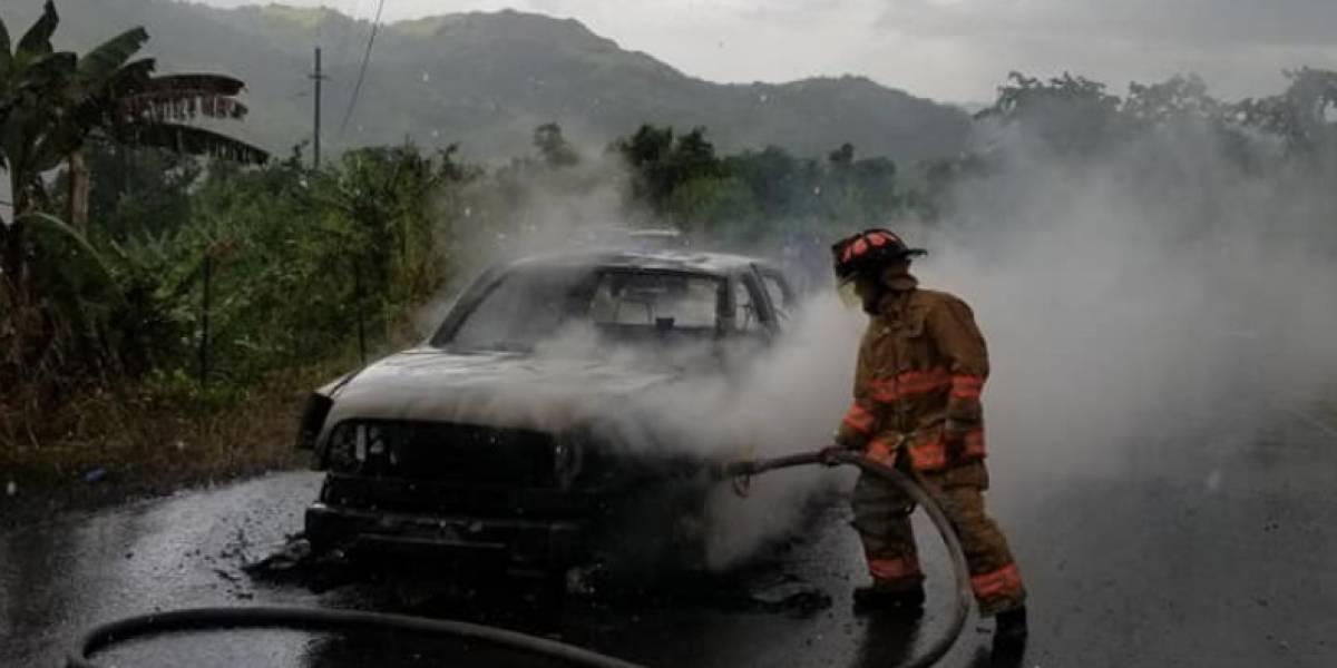 """Biblia """"sobrevive"""" a incendio de vehículo en Lares"""