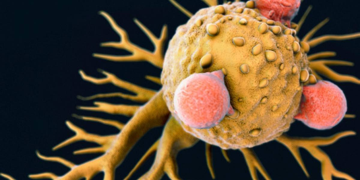 Increíble descubrimiento: el resfrío común podría ser la clave para encontrar la cura del cáncer