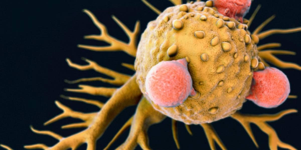 El descubrimiento que podría cambiar todo: el resfrío común podría ser la clave para encontrar la cura del cáncer