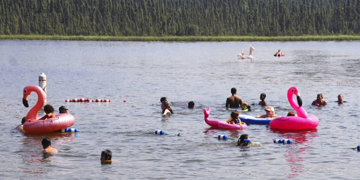 """Cambiaron las chaquetas y los gorros por los trajes de baño y flotadores de flamenco: ola de calor """"derrite"""" a Alaska y alcanza temperatura récord"""