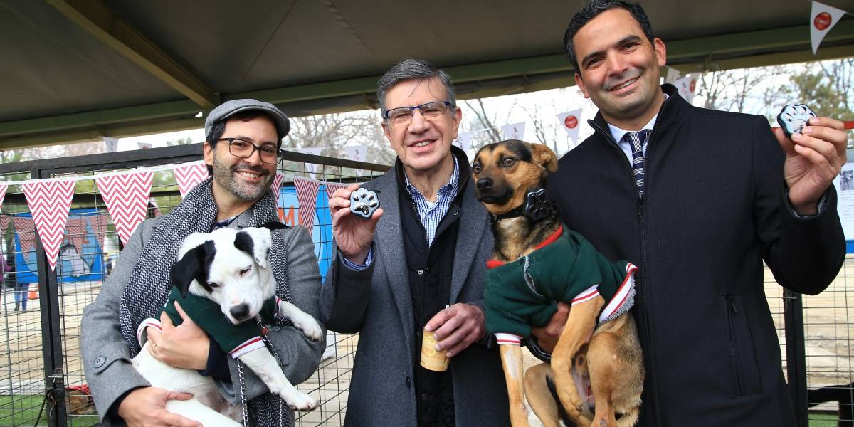 600 mascotas se pierden mensualmente en Las Condes: Con este dispositivo podrás encontrarla