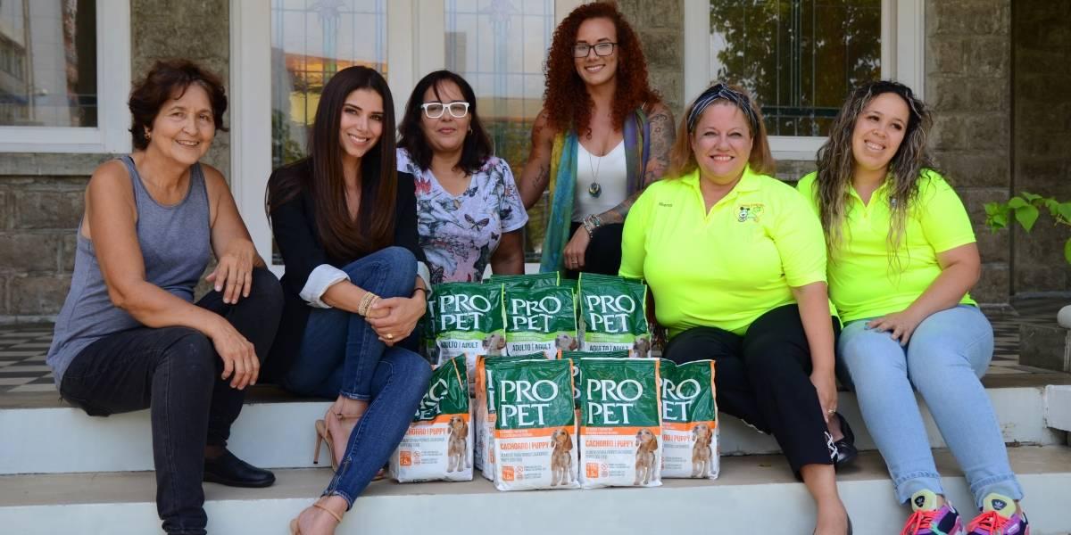 Roselyn hace alianza para donación de alimento para mascotas