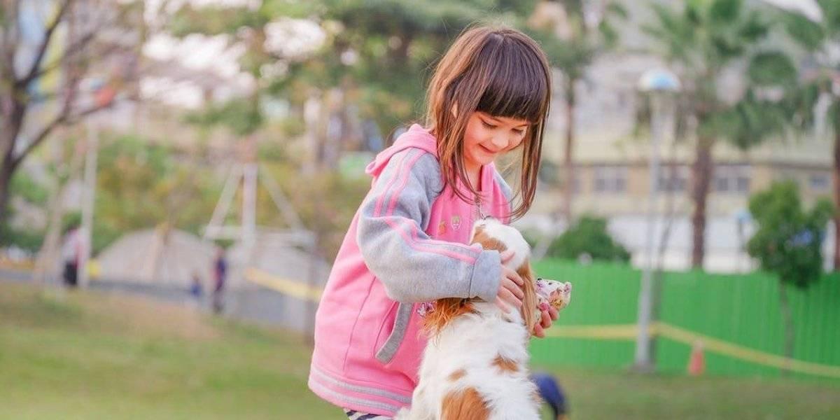 Actividades de verano para niños, padres y perros