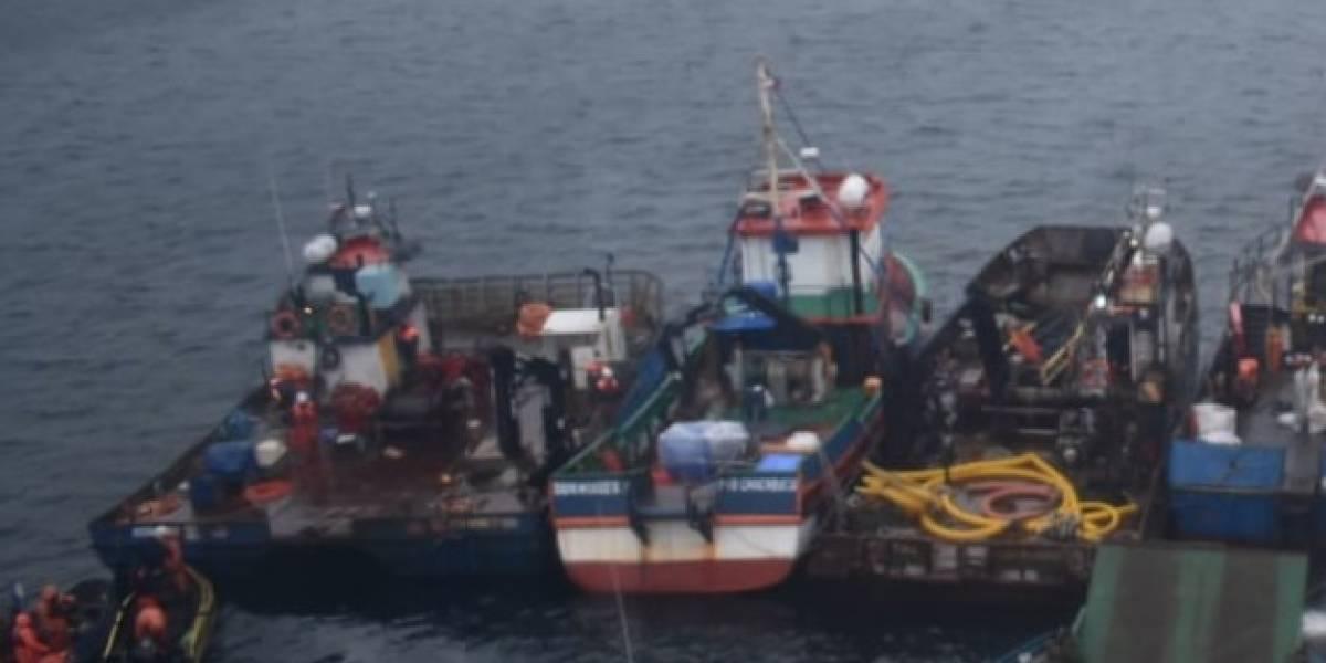 Por tres días se extenderá el rescate: así salvarán a ganado atrapado en barco que encalló en Aysén