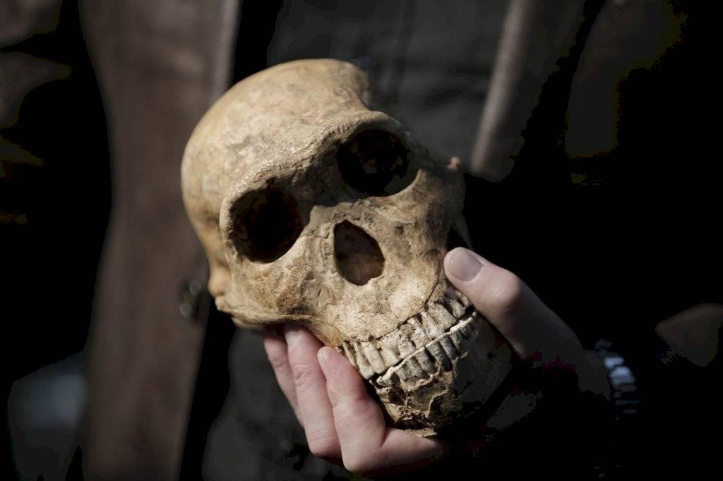 Homo sapiens no africano más antiguo