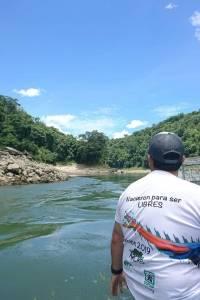 liberan a guacamayas en Parque Nacional Sierra del Lacandón