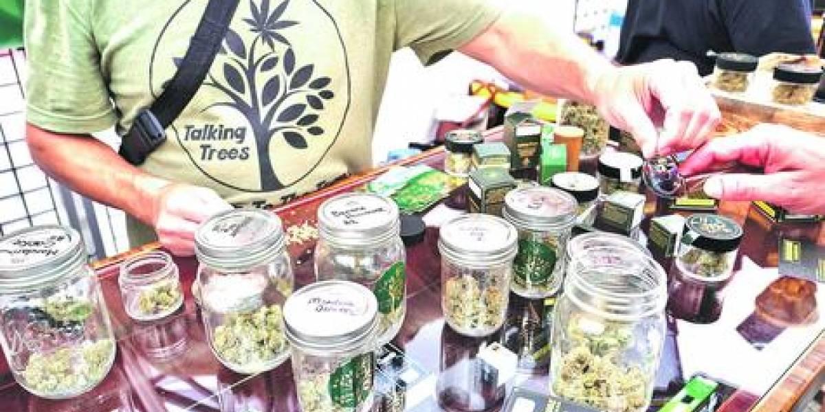 Legalización de marihuana recreativa disminuye el consumo en adolescentes