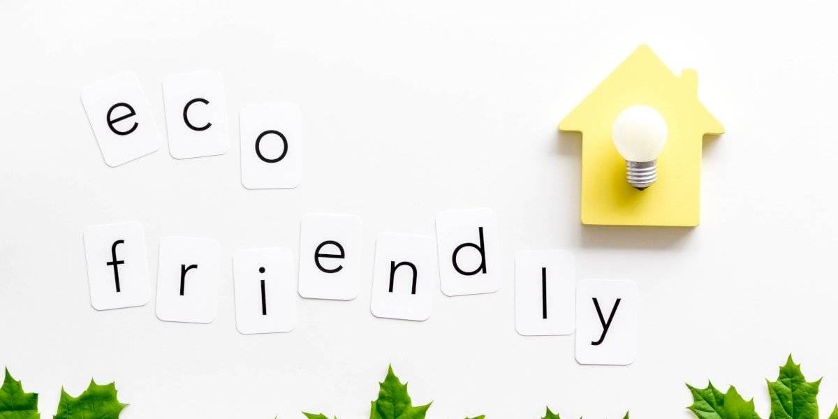 Consejos útiles para hacer que tu casa sea ecofriendly