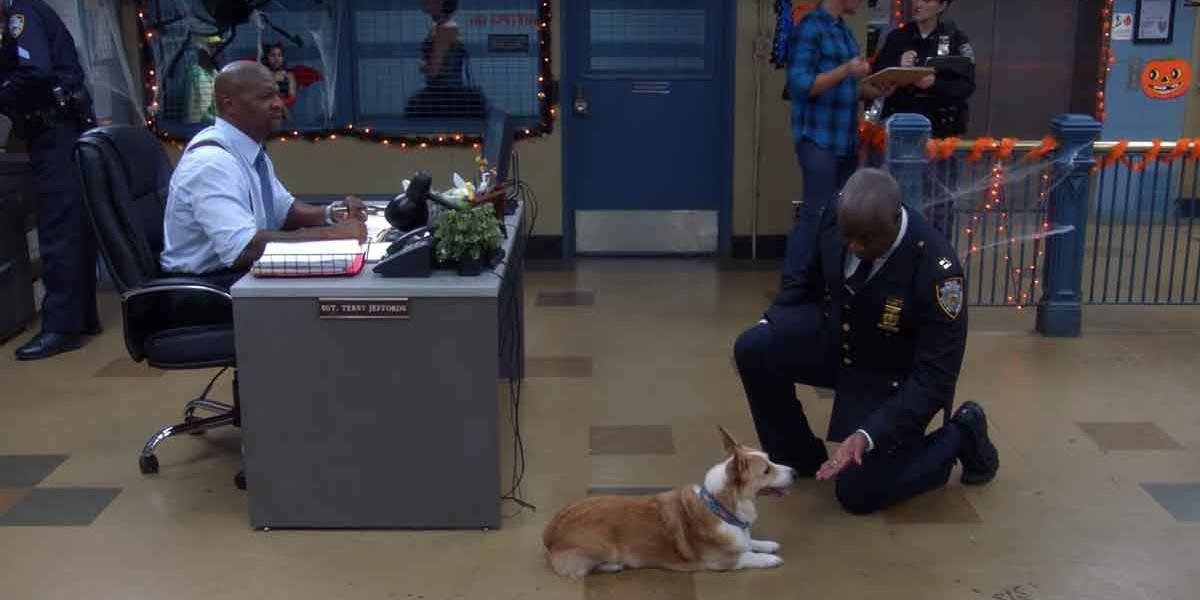 História do último dia de Cheddar, o cachorro do Capitão Holt em Brooklyn Nine-Nine, é de partir o coração