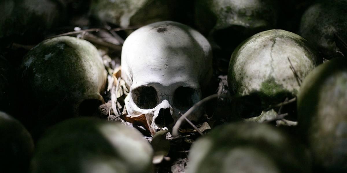 Cráneos hallados en Grecia cambiarían lo que se sabe hasta ahora sobre la migración de los primeros homo sapiens