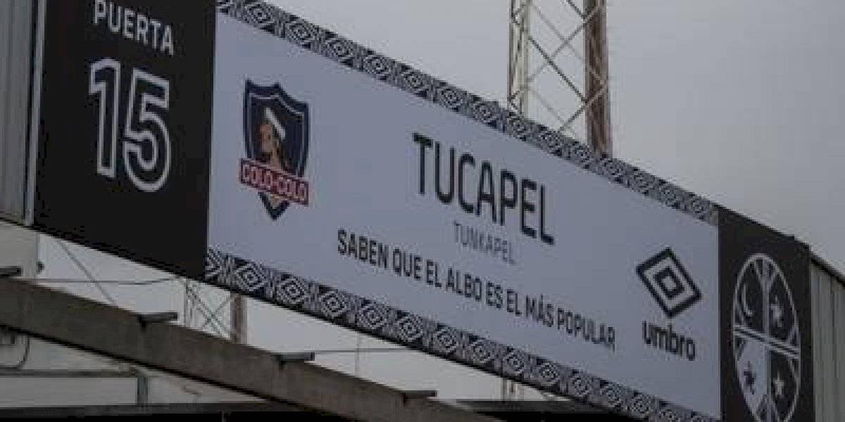 La hermosa iniciativa de Colo Colo con la que sorprenderá a sus hinchas al ingreso del Monumental