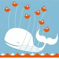 Twitter sufre importante caída a nivel mundial este 11 de julio. Noticias en tiempo real