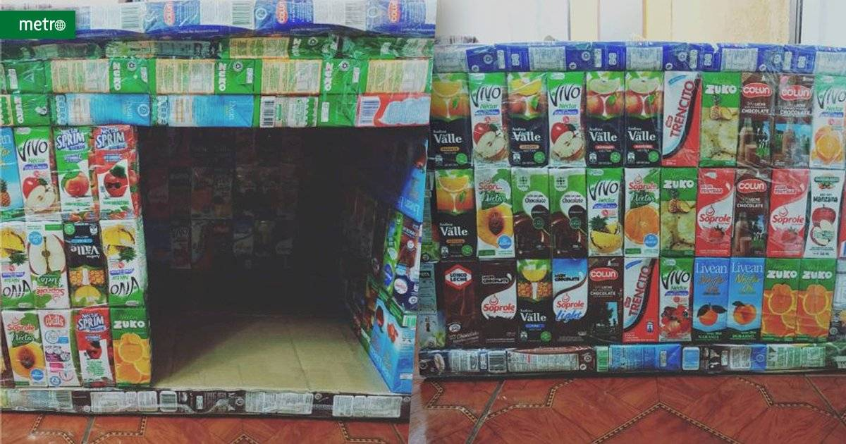 Caixinhas de suco, casas para animais