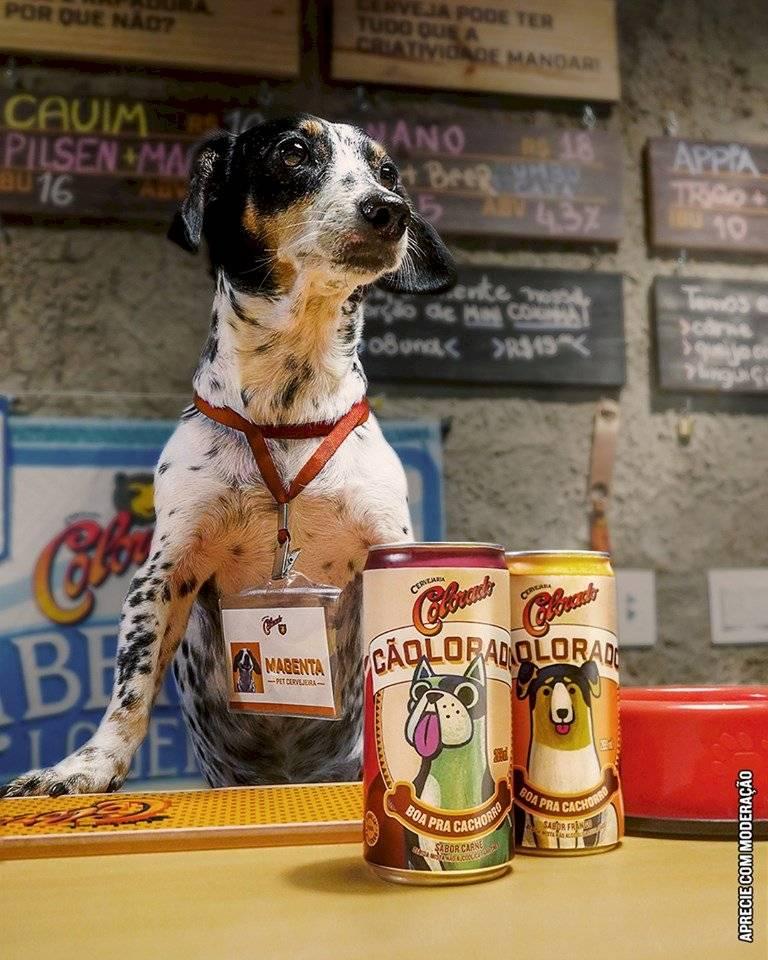 Cerveja para cachorro Colorado