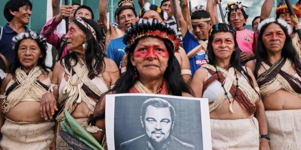 Waorani ganan fallo e impiden el ingreso de empresas petroleras a su territorio en la Amazonía