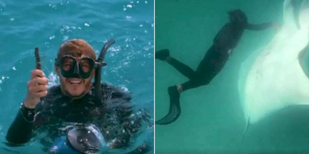 Gravam momento impressionante em que raia gigante pede ajuda para mergulhador: 'Ela sabia exatamente o que estava acontecendo'